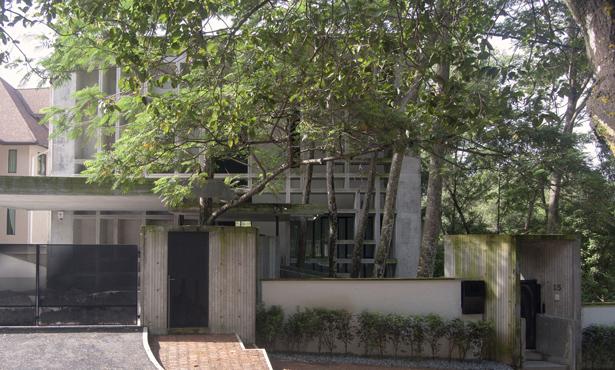 Ormanı Kucaklayan Ev