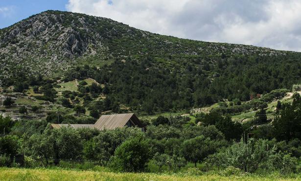 Kırsal İle Mimari Arasındaki Sınırın Yitimi: T - Evi
