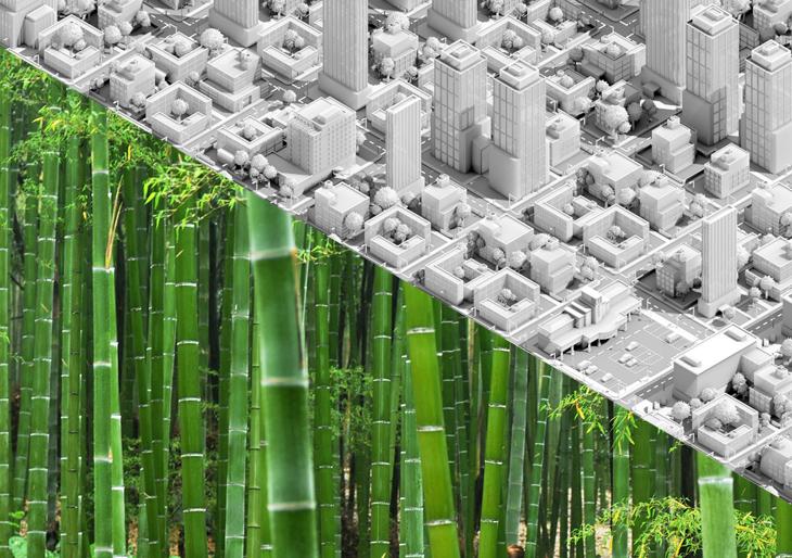 Beton Dışı: Bambu