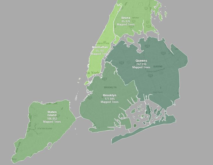 New York Şehrinin Bütün Ağaçları Bir Haritada Toplandı