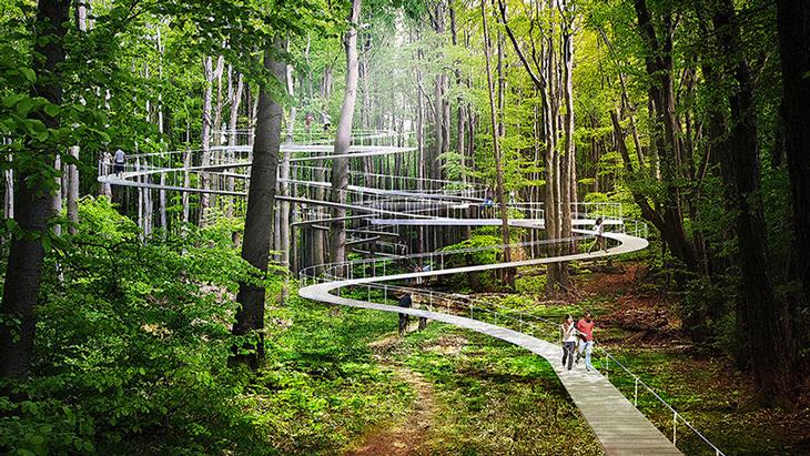 Dror'un Park Orman'a Master Plan Hazırladığı Ortaya Çıktı