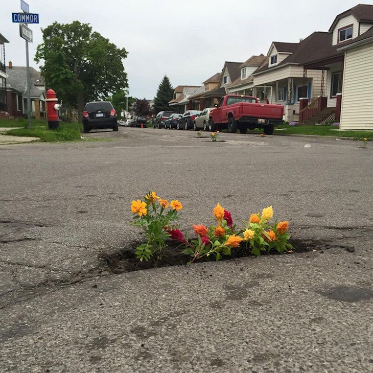 Gerilla Bahçeler ile Yollardaki Çukurlar Çiçek Açıyor