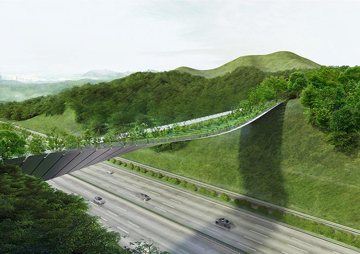 Yayalar ve Hayvanlar İçin Ekolojik Köprü Tasarımı