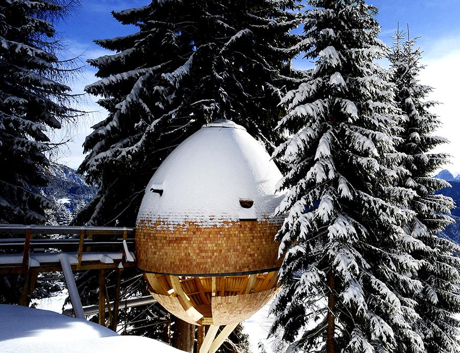 Çam Kozalağından Esinlenilen Ağaç Ev