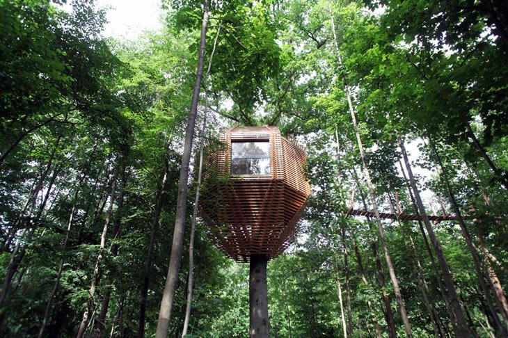 ORIGIN Ağaç Evi