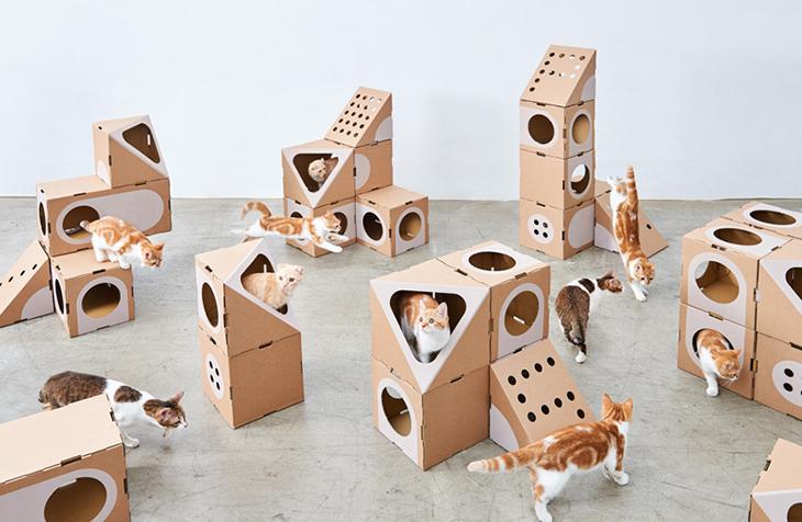 Kartondan Yapılmış Sürdürülebilir Modüler Kedi Evleri