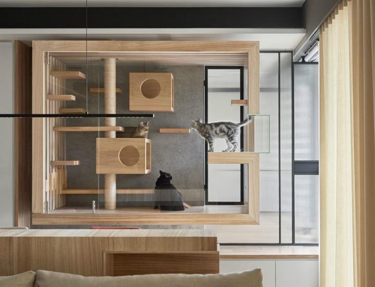 Ahşap ve Cam Tasarımıyla Modern Bir Kedi Evi