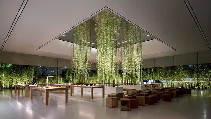 Apple Store, Şeffaf Duvarlarla Bambuyu Bütünleştiriyor