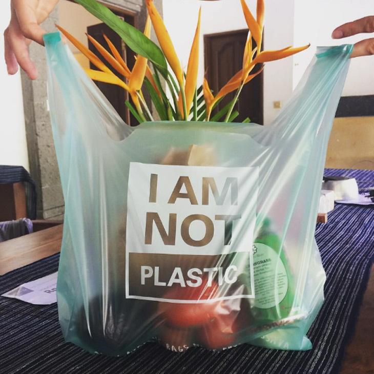 Plastiğe Alternatif Bitkisel Torbalar