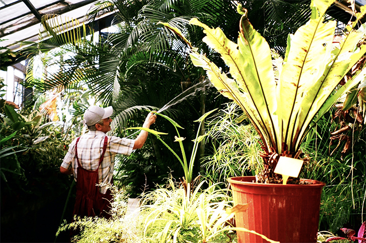 Alfred Heilbronn Botanik Bahçesi, Tarihin Katmanları Üzerinden Güncel Durumu Anlamak I