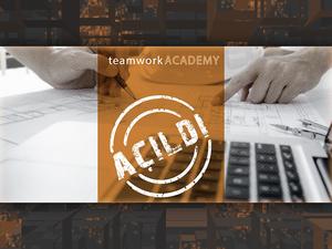 Konsept ve Ruhsat Eğitimi - teamworkACADEMY