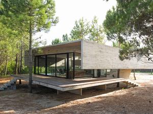 Çam Ağaçlarıyla Bütünleşen Bir Ev