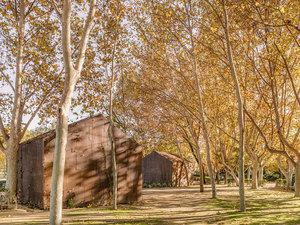 Ağaçlar Arasında Bir Ofis