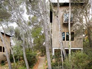 Mantarla Kaplı Orman Evleri