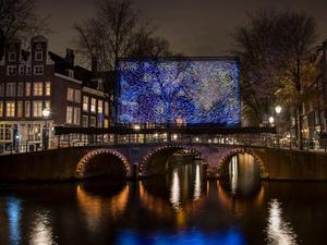 Van Gogh'un Yıldızlı Gece'si Amsterdam'daki Işık Enstalasyonu ile Yeniden Canlanıyor