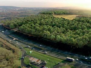 Paris'te Central Park'tan 5 Kat Büyük Bir Orman Yapılacak
