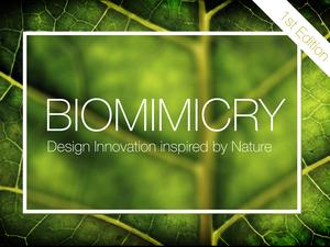 Biyomimikri Üzerine Uluslararası Tasarım Yarışması