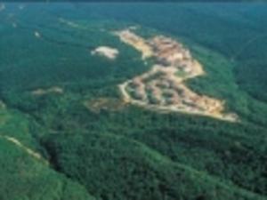 2B Orman Arazileri