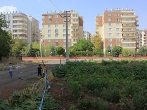 Diyarbakır'da Yaşam Alanlarını Yeniden Kurmak Üzerine